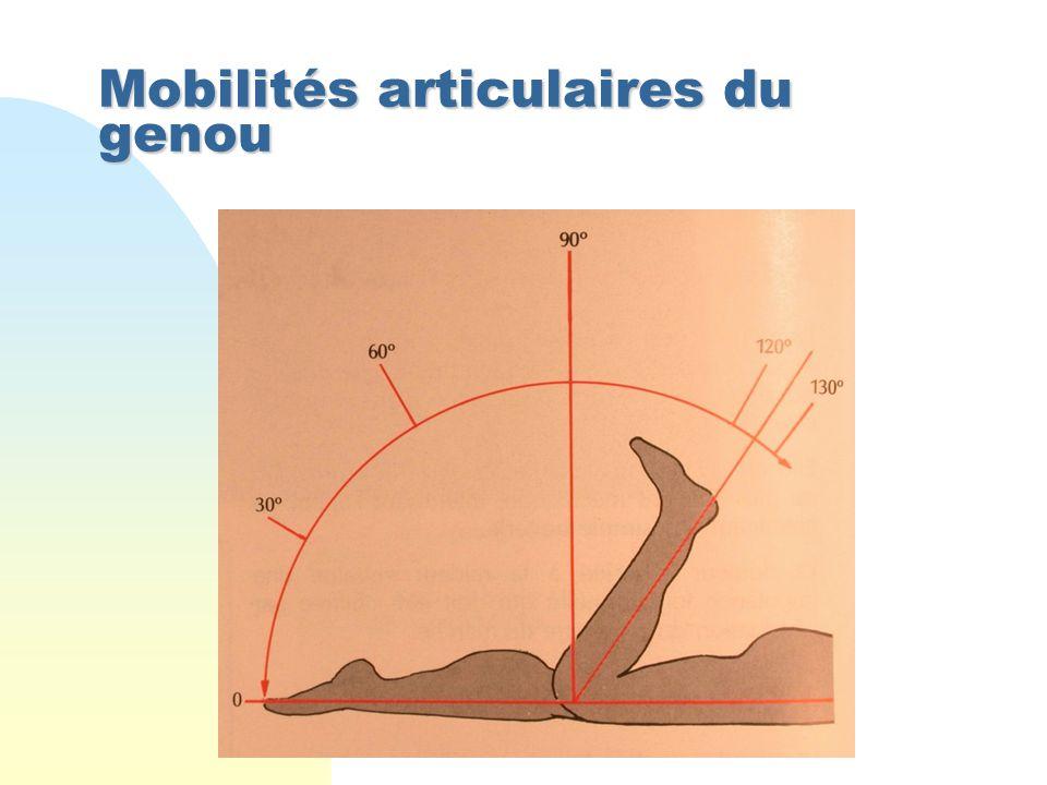 Mobilités articulaires du genou