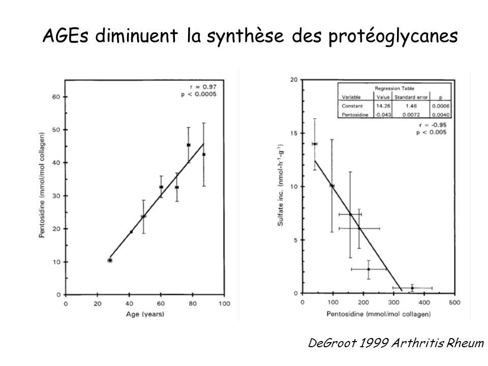 DeGroot 1999 Arthritis Rheum AGEs diminuent la synthèse des protéoglycanes