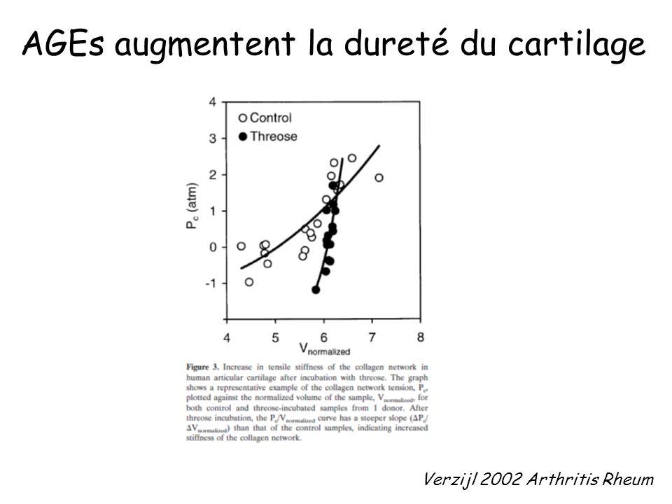 Verzijl 2002 Arthritis Rheum AGEs augmentent la dureté du cartilage