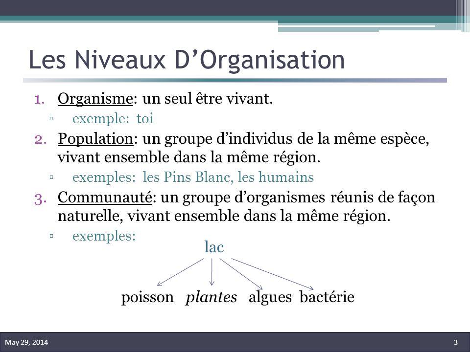 Les Niveaux DOrganisation 1.Organisme: un seul être vivant. exemple: toi 2.Population: un groupe dindividus de la même espèce, vivant ensemble dans la