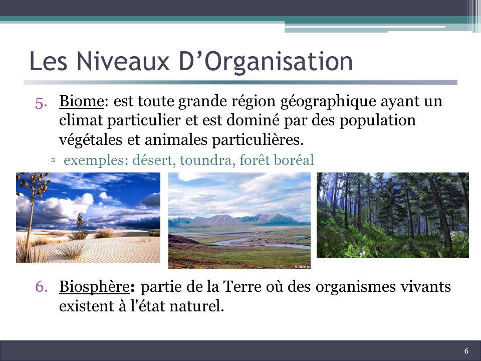Les Niveaux DOrganisation 5.Biome: est toute grande région géographique ayant un climat particulier et est dominé par des population végétales et animales particulières.