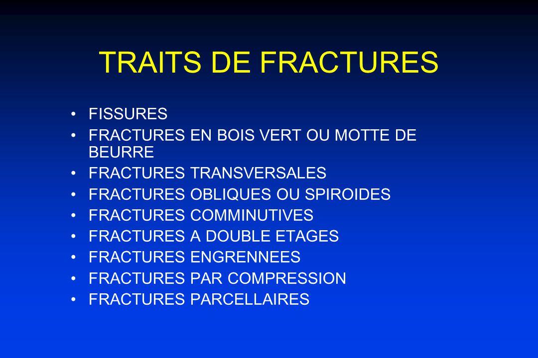 TRAITS DE FRACTURES FISSURES FRACTURES EN BOIS VERT OU MOTTE DE BEURRE FRACTURES TRANSVERSALES FRACTURES OBLIQUES OU SPIROIDES FRACTURES COMMINUTIVES FRACTURES A DOUBLE ETAGES FRACTURES ENGRENNEES FRACTURES PAR COMPRESSION FRACTURES PARCELLAIRES