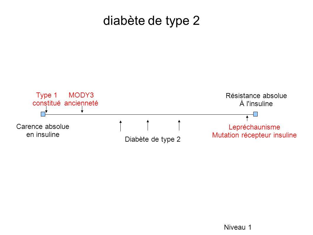 diabète de type 2 Niveau 1 Carence absolue en insuline Résistance absolue À l'insuline Type 1 constitué MODY3 ancienneté Lepréchaunisme Mutation récep