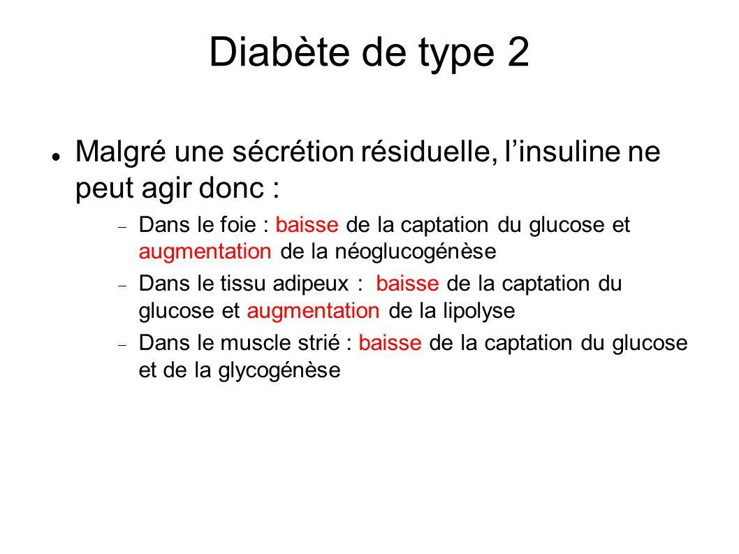 Diabète de type 2 Malgré une sécrétion résiduelle, linsuline ne peut agir donc : Dans le foie : baisse de la captation du glucose et augmentation de l