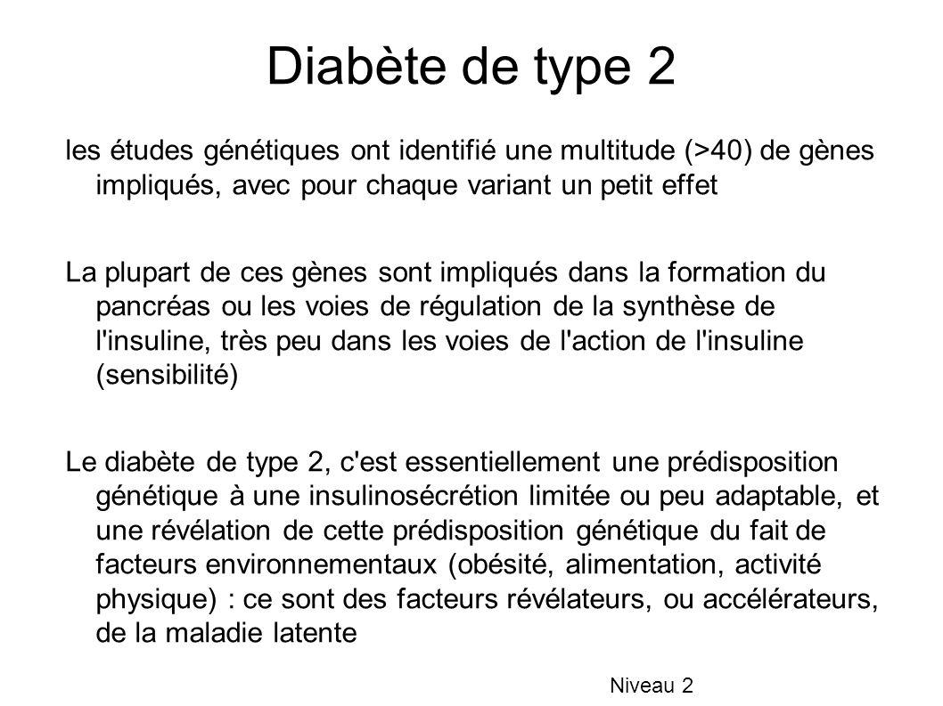 Diabète de type 2 les études génétiques ont identifié une multitude (>40) de gènes impliqués, avec pour chaque variant un petit effet La plupart de ce