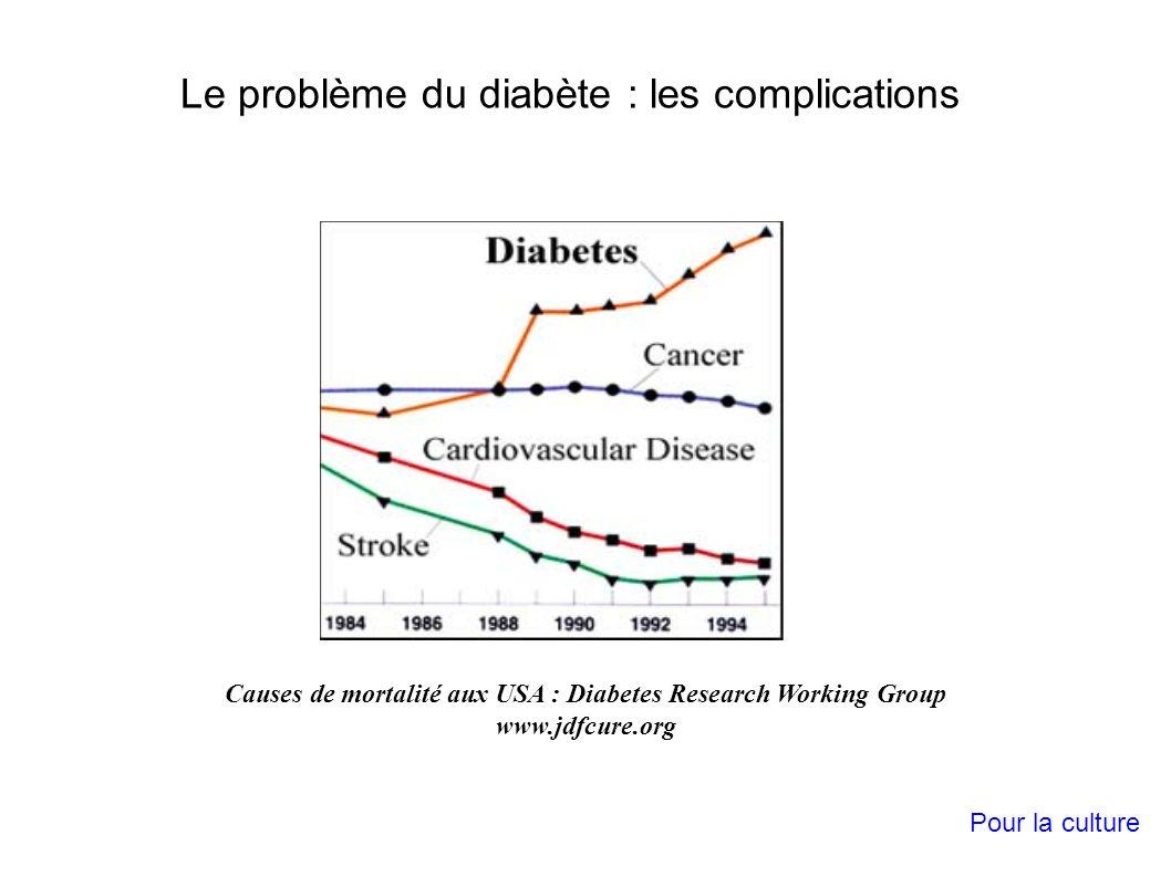 Causes de mortalité aux USA : Diabetes Research Working Group www.jdfcure.org Le problème du diabète : les complications Pour la culture