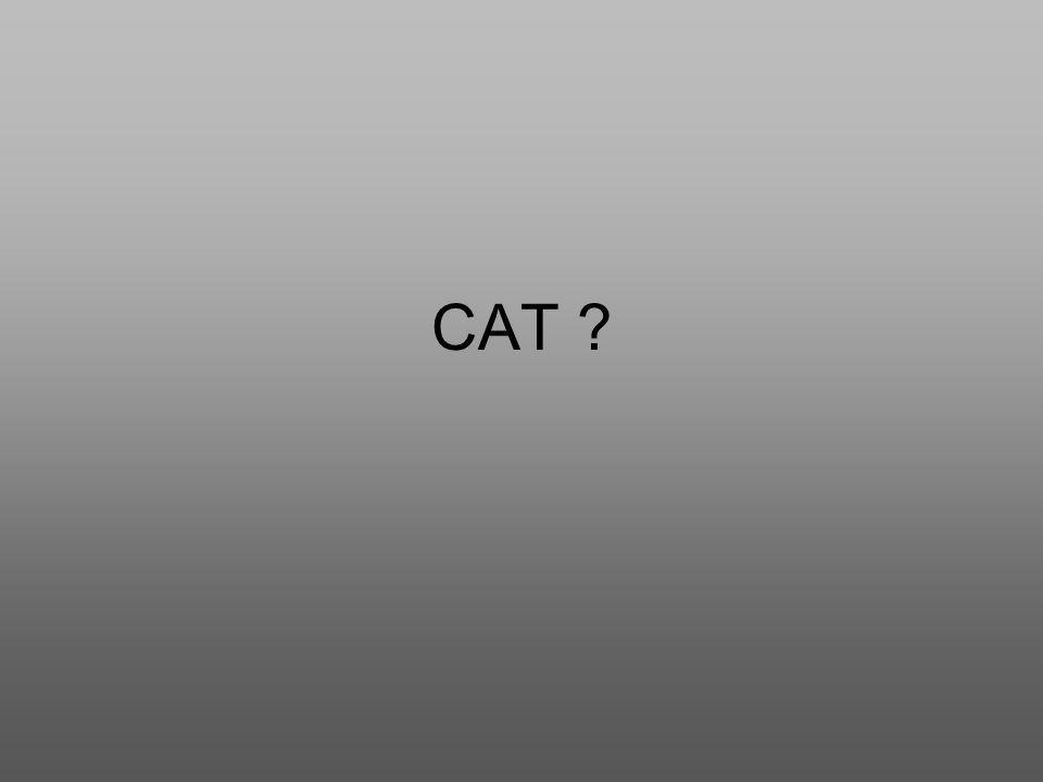 CAT ?