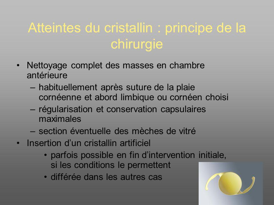 Atteintes du cristallin : corps étrangers Corps étranger avec cristallin clair –Abstention .