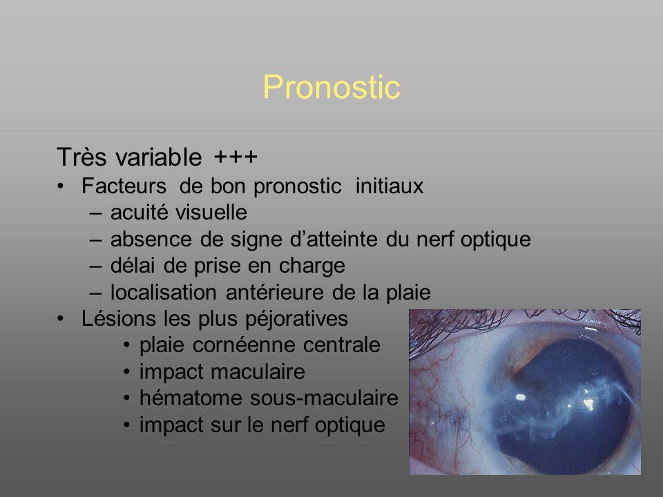 Pronostic Très variable +++ Facteurs de bon pronostic initiaux –acuité visuelle –absence de signe datteinte du nerf optique –délai de prise en charge –localisation antérieure de la plaie Lésions les plus péjoratives plaie cornéenne centrale impact maculaire hématome sous-maculaire impact sur le nerf optique