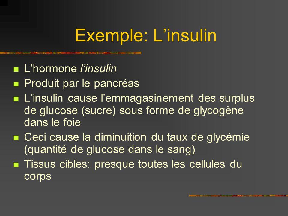 Exemple: Linsulin Lhormone linsulin Produit par le pancréas Linsulin cause lemmagasinement des surplus de glucose (sucre) sous forme de glycogène dans