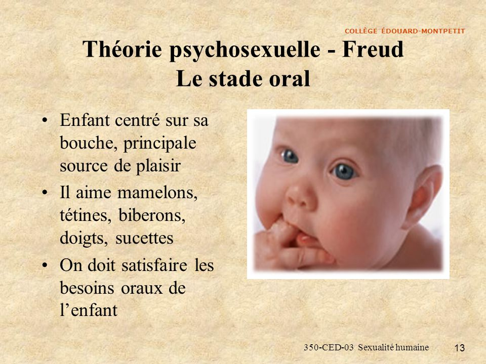 COLLÈGE ÉDOUARD-MONTPETIT 350-CED-03 Sexualité humaine 13 Théorie psychosexuelle - Freud Le stade oral Enfant centré sur sa bouche, principale source