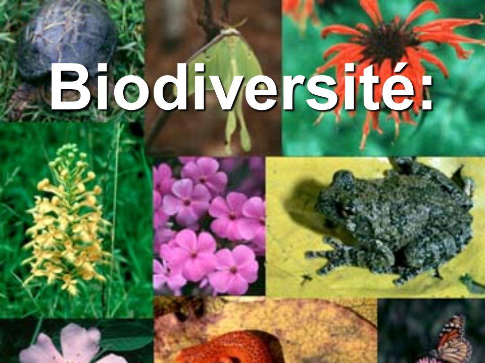 Biodiversité: