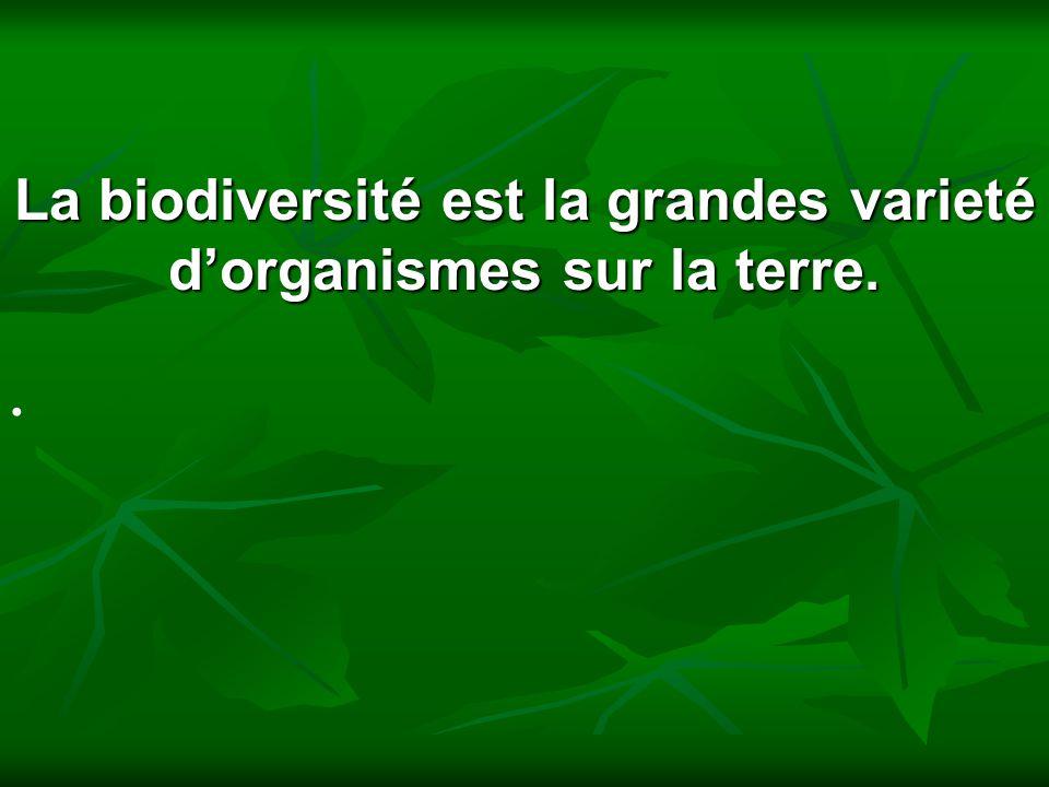 La biodiversité est la grandes varieté dorganismes sur la terre.