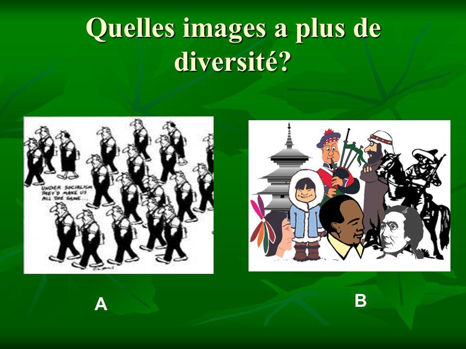 A B Quelles images a plus de diversité?