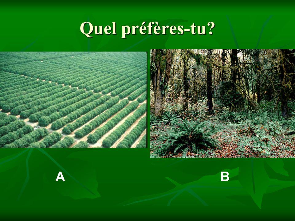 Que veut dire… biodiversité?
