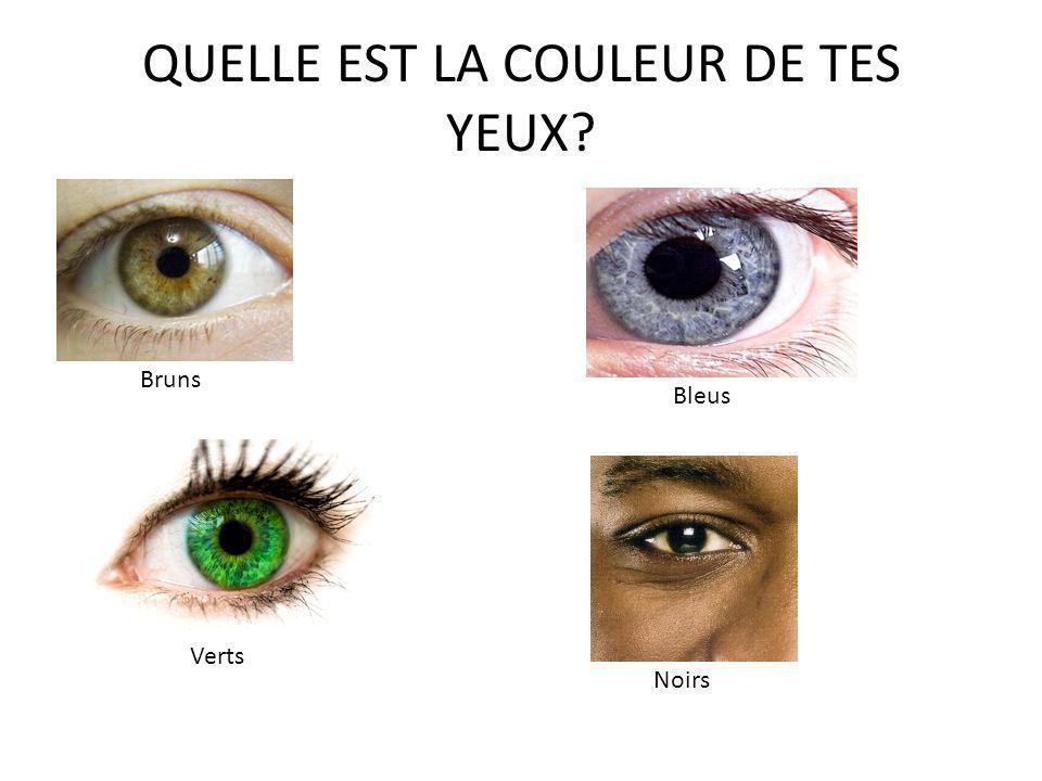 QUELLE EST LA COULEUR DE TES YEUX? Bleus Verts Bruns Noirs