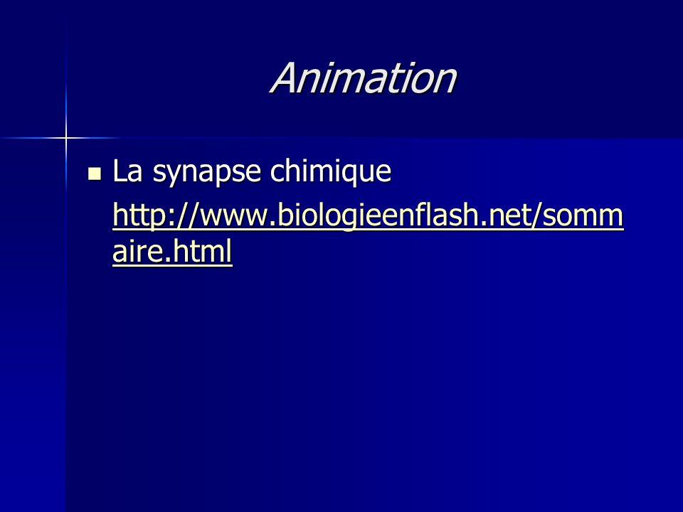 Animation La synapse chimique La synapse chimique http://www.biologieenflash.net/somm aire.html http://www.biologieenflash.net/somm aire.html