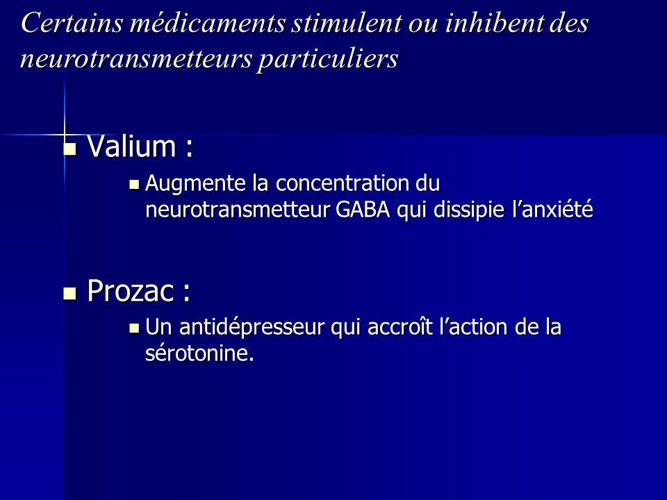 Valium : Valium : Augmente la concentration du neurotransmetteur GABA qui dissipie lanxiété Augmente la concentration du neurotransmetteur GABA qui di