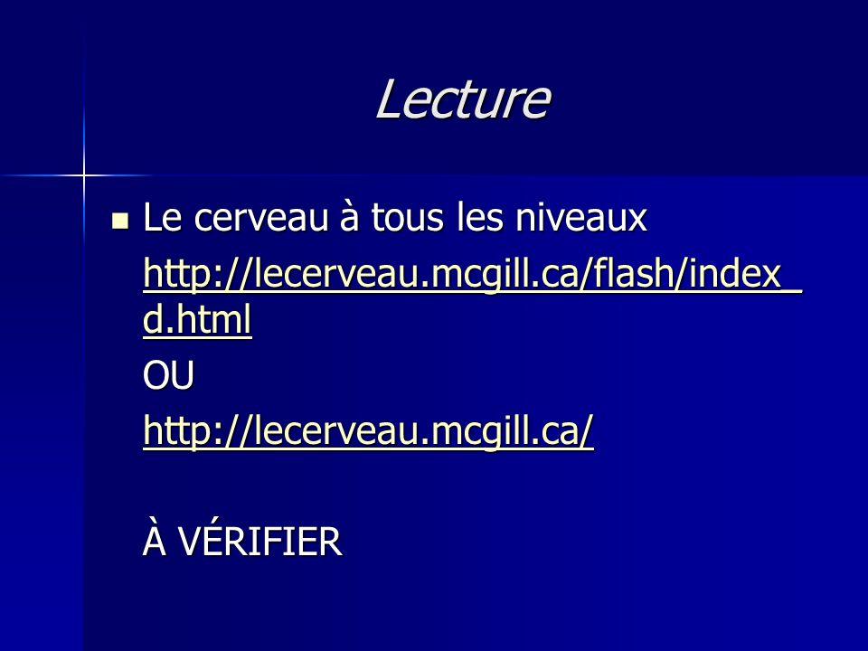Lecture Le cerveau à tous les niveaux Le cerveau à tous les niveaux http://lecerveau.mcgill.ca/flash/index_ d.html http://lecerveau.mcgill.ca/flash/in