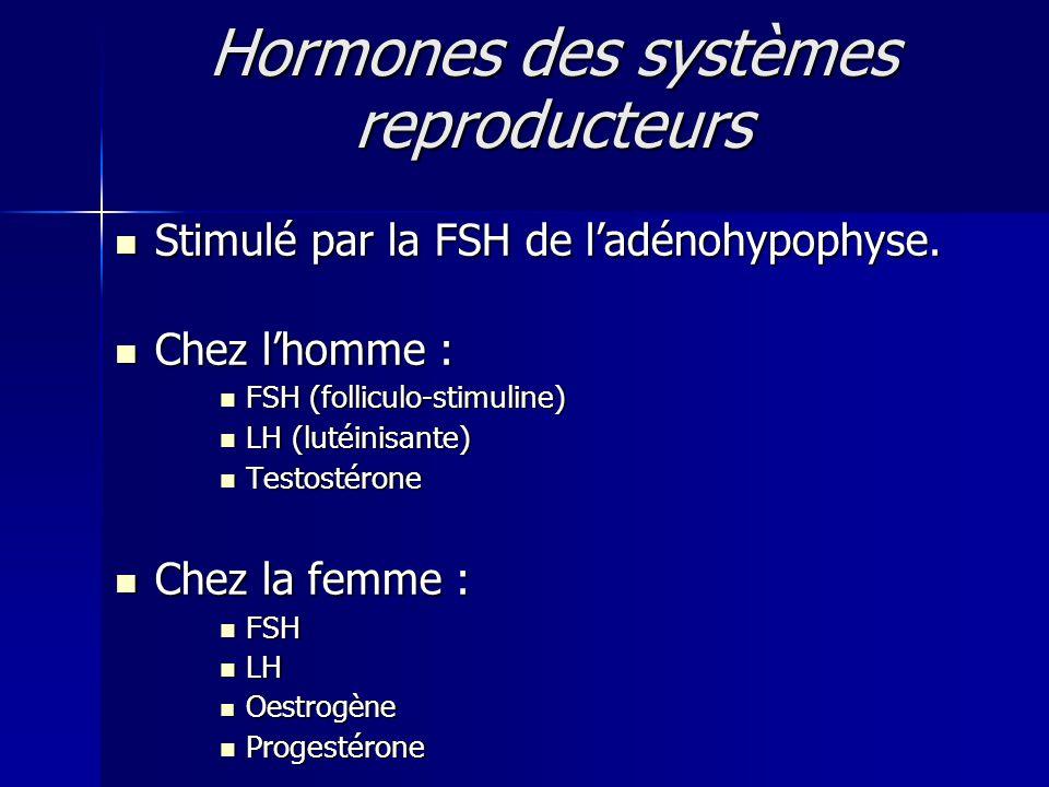 Hormones des systèmes reproducteurs Stimulé par la FSH de ladénohypophyse. Stimulé par la FSH de ladénohypophyse. Chez lhomme : Chez lhomme : FSH (fol