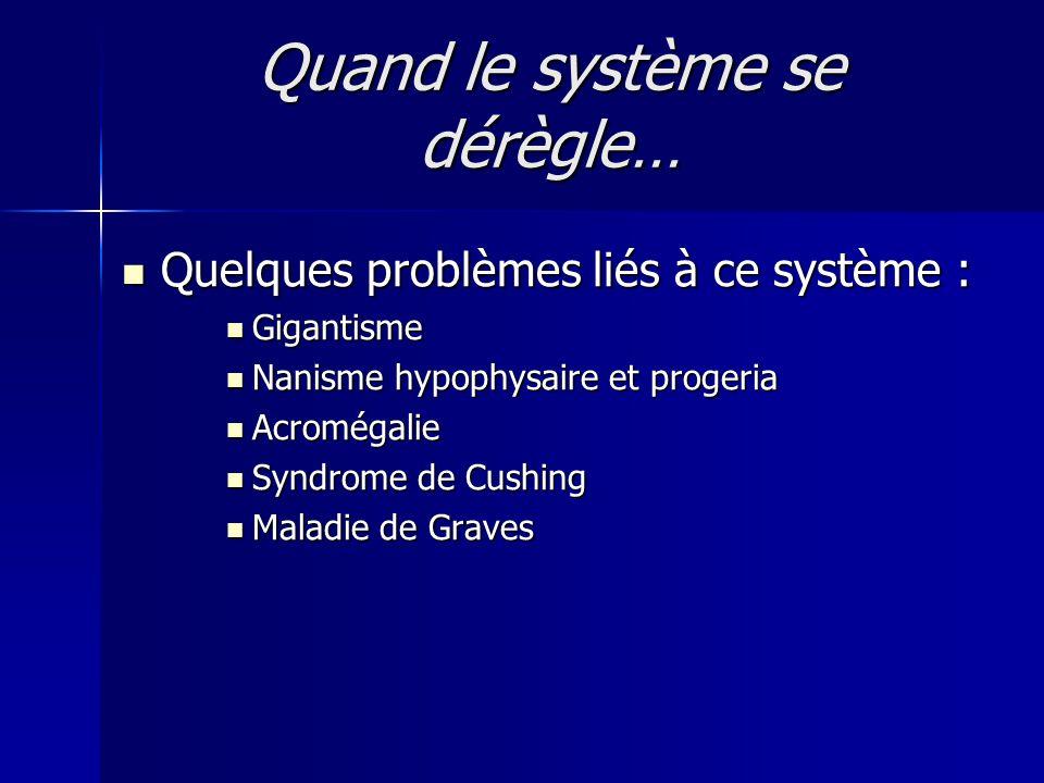 Quand le système se dérègle… Quelques problèmes liés à ce système : Quelques problèmes liés à ce système : Gigantisme Gigantisme Nanisme hypophysaire