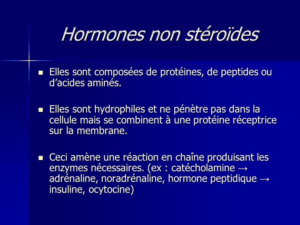 Hormones non stéroïdes Elles sont composées de protéines, de peptides ou dacides aminés. Elles sont composées de protéines, de peptides ou dacides ami