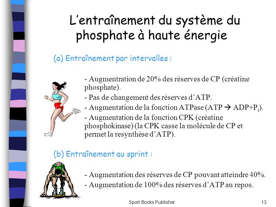 Sport Books Publisher13 Lentraînement du système du phosphate à haute énergie (a) Entraînement par intervalles : - Augmentration de 20% des réserves d