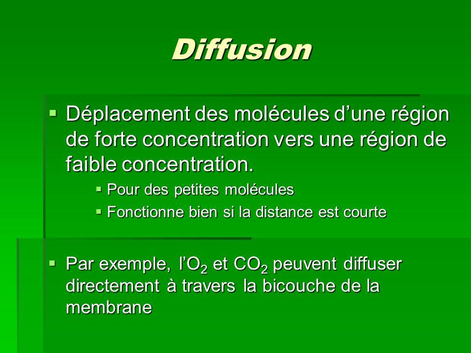 Diffusion Déplacement des molécules dune région de forte concentration vers une région de faible concentration. Déplacement des molécules dune région