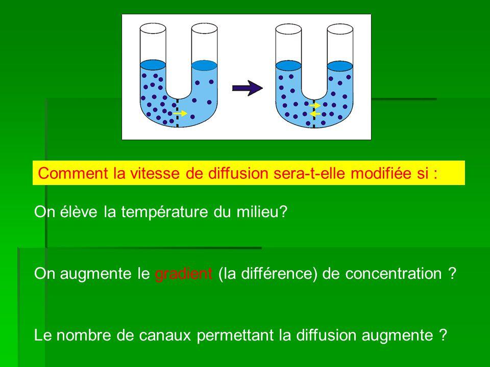 Comment la vitesse de diffusion sera-t-elle modifiée si : On élève la température du milieu? On augmente le gradient (la différence) de concentration