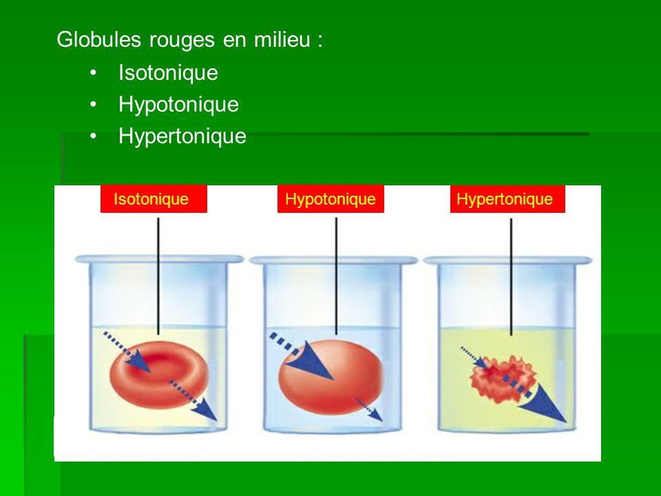 Globules rouges en milieu : Isotonique Hypotonique Hypertonique Isotonique Hypertonique Hypotonique