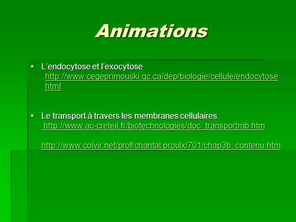 Animations Lendocytose et lexocytose Lendocytose et lexocytose http://www.cegeprimouski.qc.ca/dep/biologie/cellule/endocytose html Le transport à trav