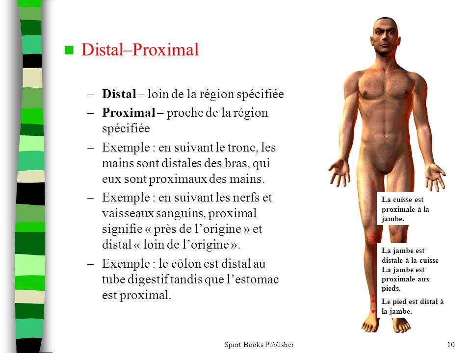 Sport Books Publisher10 Distal–Proximal –Distal – loin de la région spécifiée –Proximal – proche de la région spécifiée –Exemple : en suivant le tronc