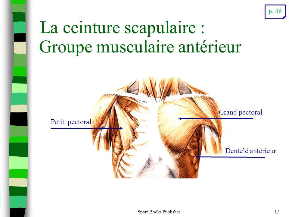 Sport Books Publisher12 La ceinture scapulaire : Petit pectoral Dentelé antérieur Grand pectoral Groupe musculaire antérieur p. 46