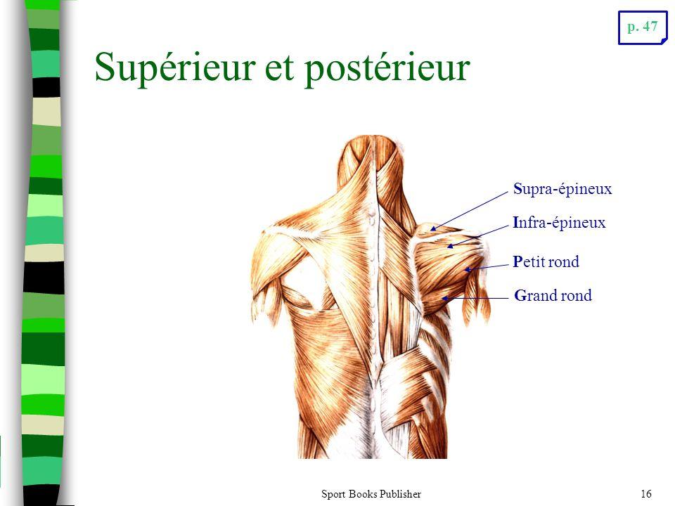 Sport Books Publisher16 Supérieur et postérieur Supra-épineux Infra-épineux Petit rond Grand rond p. 47