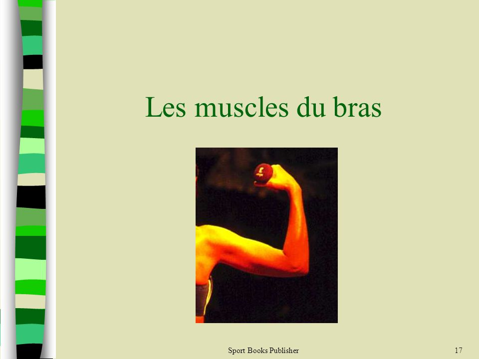 Sport Books Publisher17 Les muscles du bras