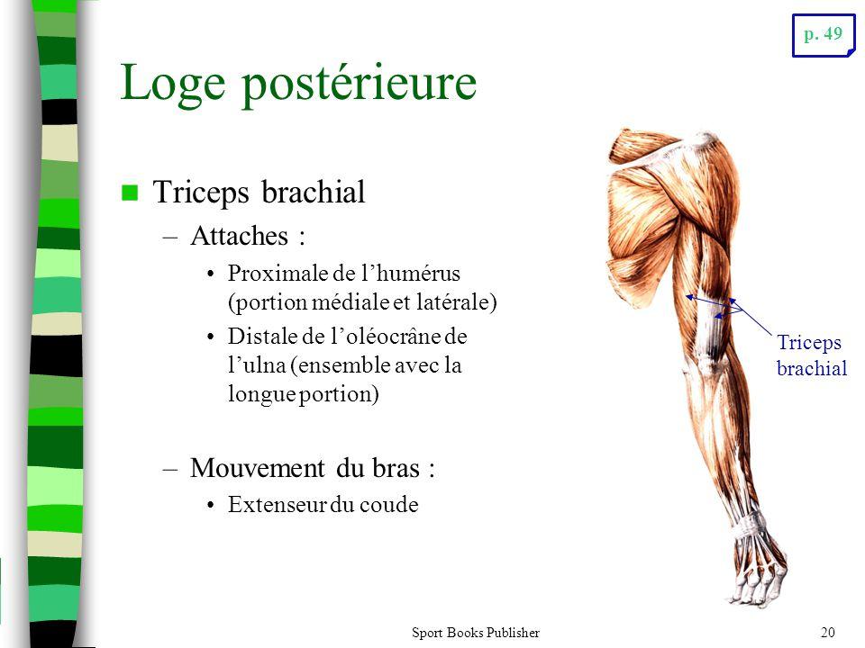 Sport Books Publisher20 Loge postérieure Triceps brachial –Attaches : Proximale de lhumérus (portion médiale et latérale) Distale de loléocrâne de lulna (ensemble avec la longue portion) –Mouvement du bras : Extenseur du coude Triceps brachial p.