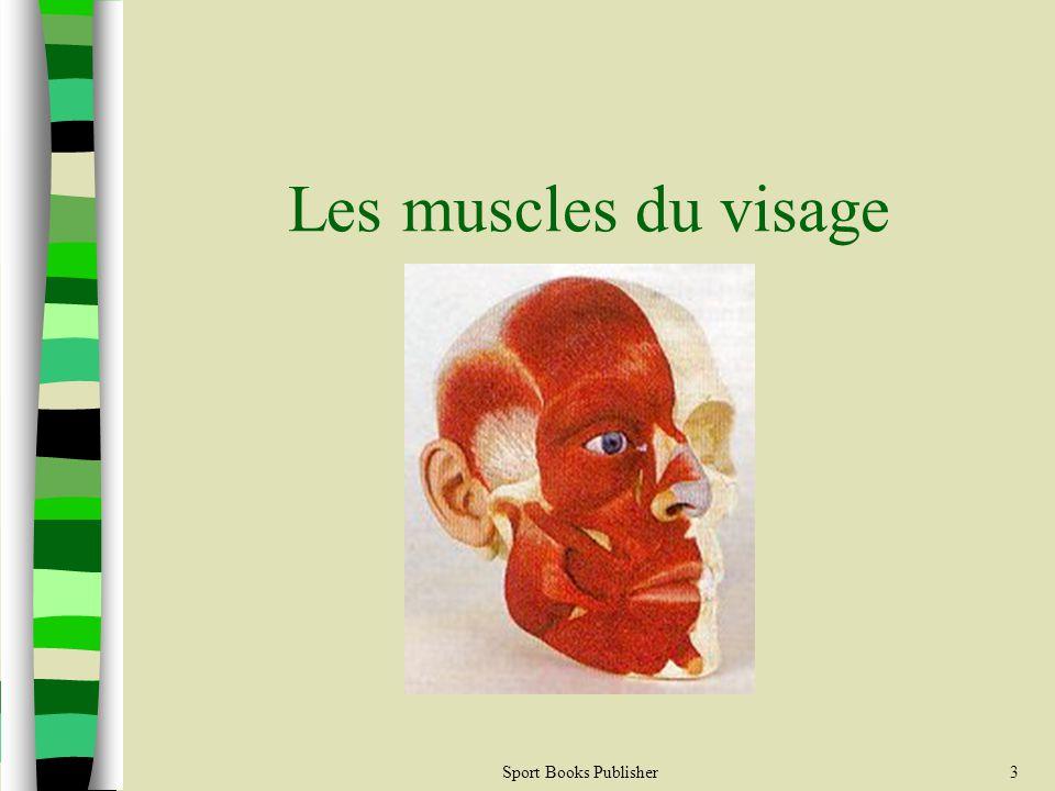 3 Les muscles du visage