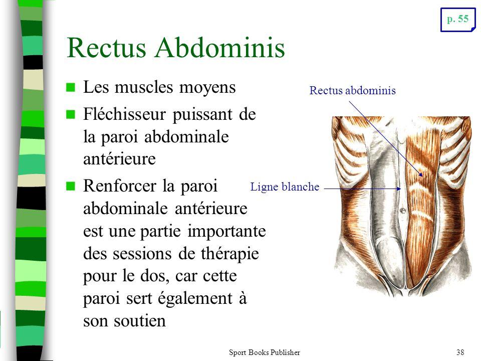 Sport Books Publisher38 Rectus Abdominis Les muscles moyens Fléchisseur puissant de la paroi abdominale antérieure Renforcer la paroi abdominale antérieure est une partie importante des sessions de thérapie pour le dos, car cette paroi sert également à son soutien Rectus abdominis Ligne blanche p.