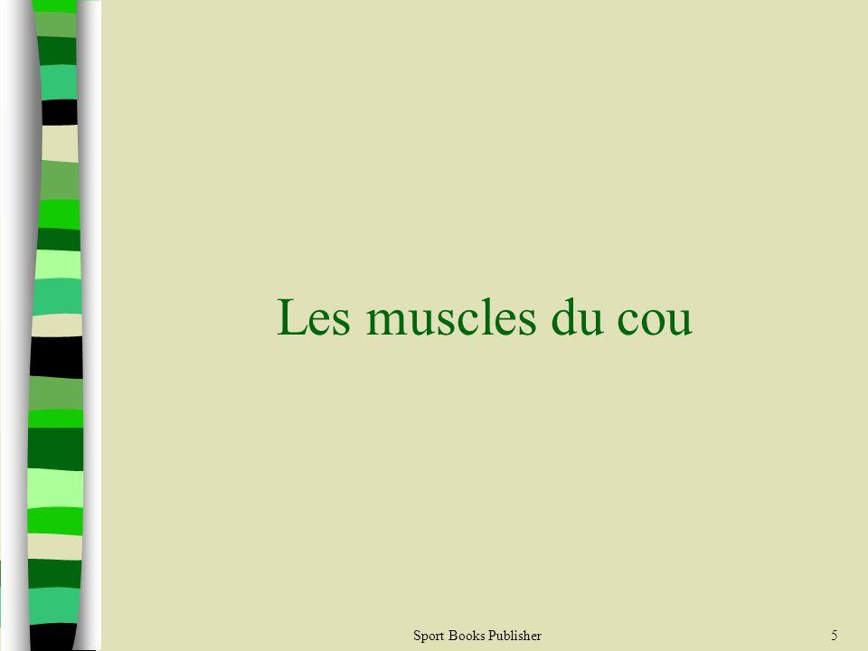 Sport Books Publisher36 Les muscles de labdomen