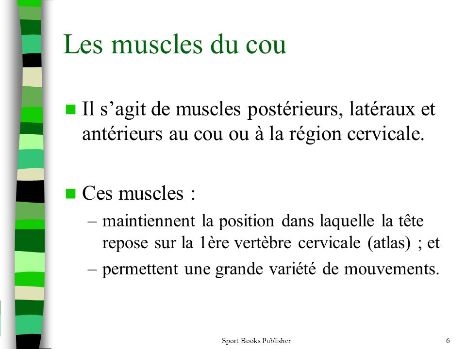 Sport Books Publisher6 Il sagit de muscles postérieurs, latéraux et antérieurs au cou ou à la région cervicale. Ces muscles : –maintiennent la positio