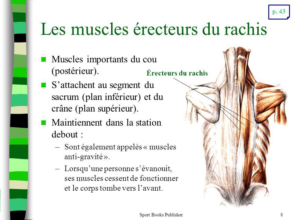 Sport Books Publisher8 Les muscles érecteurs du rachis Muscles importants du cou (postérieur). Sattachent au segment du sacrum (plan inférieur) et du