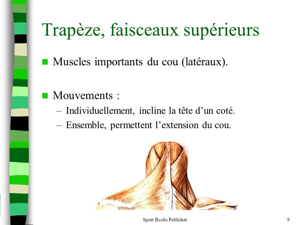 Sport Books Publisher9 Trapèze, faisceaux supérieurs Muscles importants du cou (latéraux). Mouvements : –Individuellement, incline la tête dun coté. –