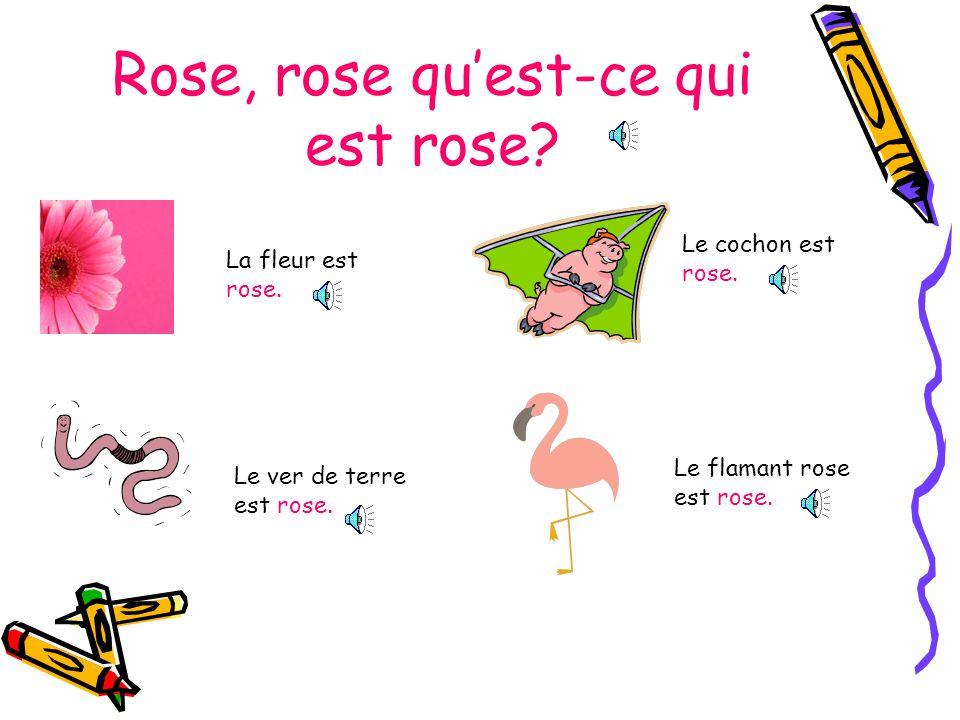 Rose, rose quest-ce qui est rose.La fleur est rose.