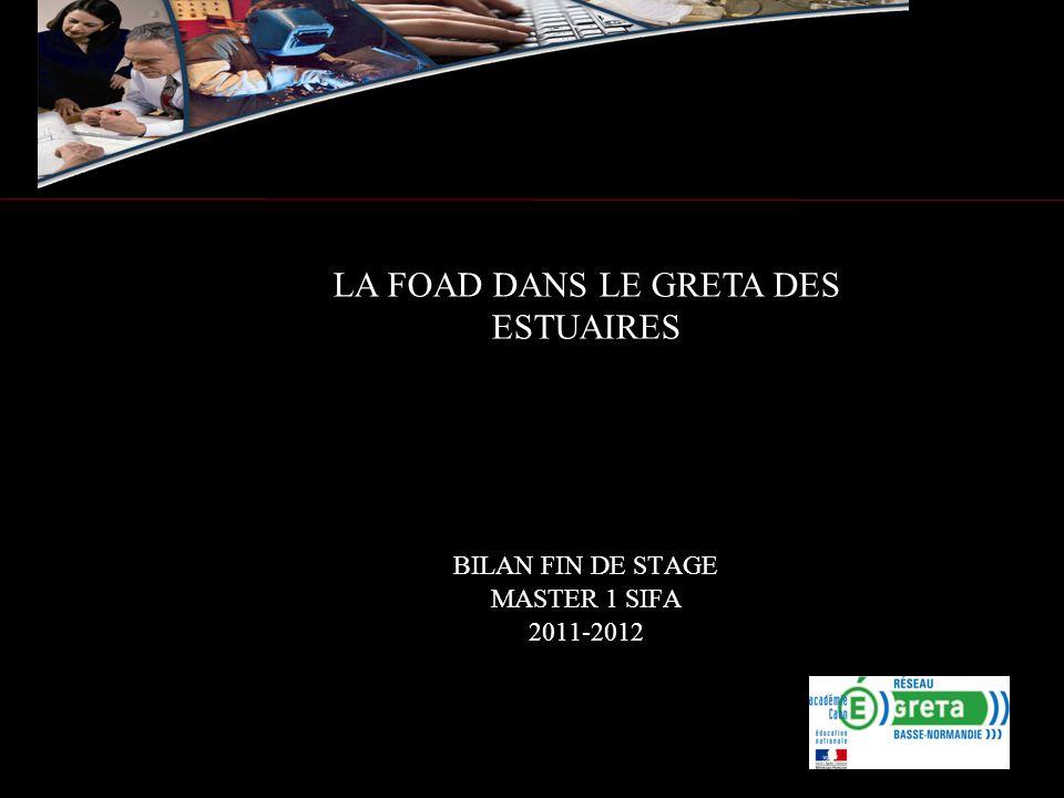 BILAN FIN DE STAGE MASTER 1 SIFA 2011-2012 LA FOAD DANS LE GRETA DES ESTUAIRES
