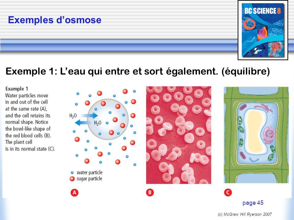 (c) McGraw Hill Ryerson 2007 Exemples dosmose page 45 Exemple 1: Leau qui entre et sort également. (équilibre)