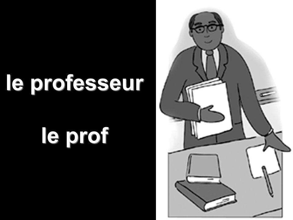 le professeur le prof