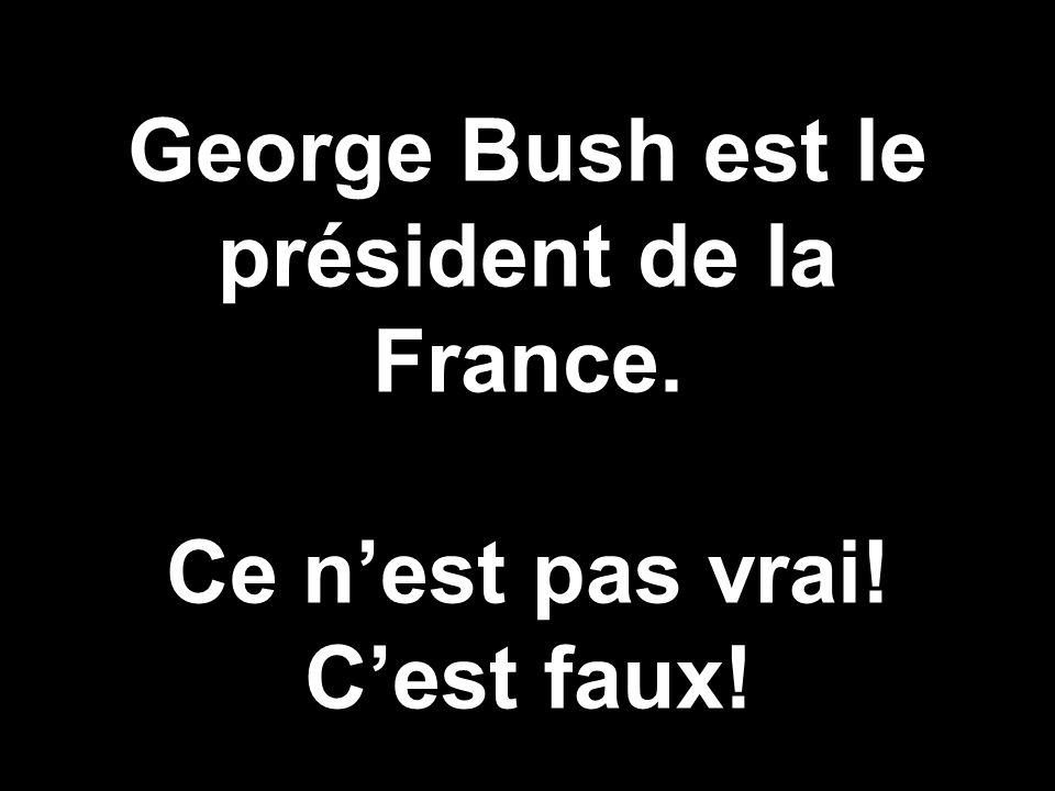 George Bush est le président de la France. Ce nest pas vrai! Cest faux!