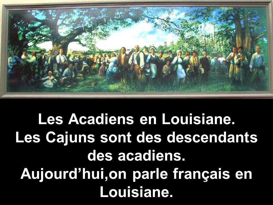 Les Acadiens en Louisiane. Les Cajuns sont des descendants des acadiens. Aujourdhui,on parle français en Louisiane.