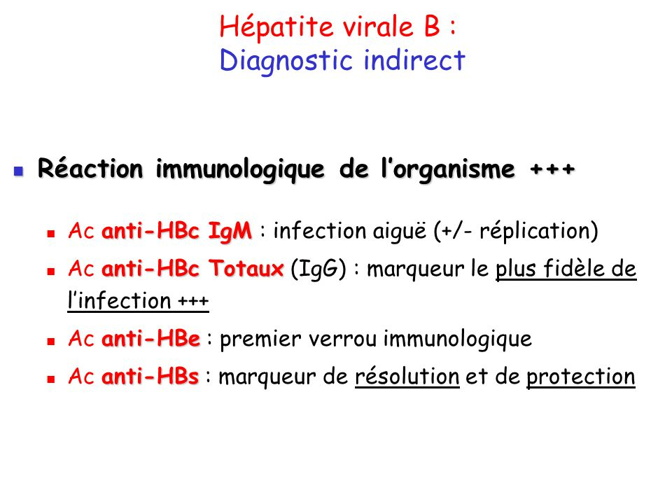 Hépatite virale B : Diagnostic indirect Réaction immunologique de lorganisme +++ Réaction immunologique de lorganisme +++ anti-HBc IgM Ac anti-HBc IgM