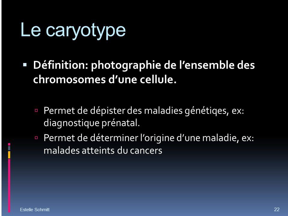 Le caryotype Définition: photographie de lensemble des chromosomes dune cellule. Permet de dépister des maladies génétiqes, ex: diagnostique prénatal.